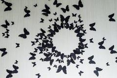 Tło z granicą motyli latać Doskonalić dla plecy Zdjęcie Royalty Free