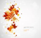 Tło z jesień liśćmi royalty ilustracja