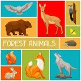 Tło z lasów lasowymi zwierzętami ptakami i samolotu samolotowego tła błękitny projekta elementu ilustraci strumień wykłada styliz Zdjęcia Royalty Free