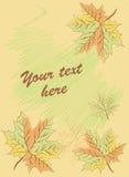 Tło z liśćmi i tekstem Zdjęcia Royalty Free