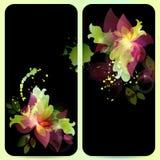 Setów kwiatów karta Obraz Royalty Free