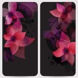 Setów kwiatów karta Fotografia Royalty Free