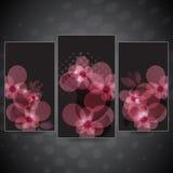 Setów kwiatów karta Obrazy Royalty Free
