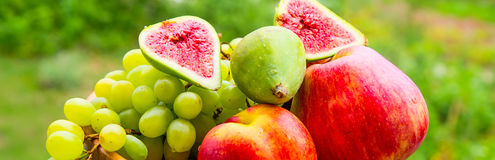 Tło z organicznie owoc winogron brzoskwini jabłczaną figą Obrazy Royalty Free