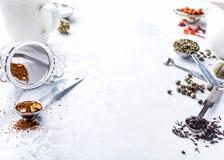 Tło z różnymi typ herbaciani liście Obraz Royalty Free