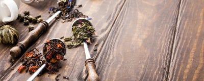 Tło z różnymi typ herbaciani liście Zdjęcie Stock