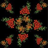 Tło z rowanberry, zielenią i złoto liśćmi, Fotografia Royalty Free