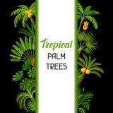 Tło z tropikalnymi drzewkami palmowymi Egzotyczna tropikalnych rośliien ilustracja dżungli natura ilustracji