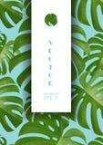 Tło z tropikalnymi palmowymi liśćmi Egzotyczne tropikalne rośliny Zdjęcie Royalty Free