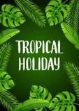 Tło z tropikalnymi palmowymi liśćmi Egzotyczne tropikalne rośliny Ilustracja dżungli natura ilustracji