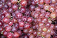 Tło z winogronami owocowymi w południowo-wschodni Asia rynku fotografia stock