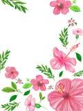 Tło z zieleni menchii i liści kwiatów ręką malował z nafcianymi kredkami Zdjęcie Stock