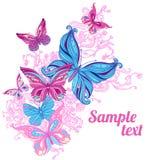 tło zadziwiający motyle Fotografia Royalty Free