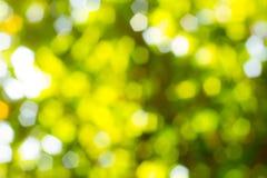 tło zamazujący zielony naturalny Obrazy Stock