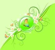 tło zieleń Obraz Stock