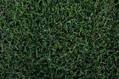 tło zieleń Fotografia Stock