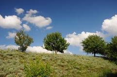 tło zieleni krajobrazu natury nowożytny wektor Fotografia Royalty Free