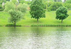 tło zieleni krajobrazu natury nowożytny wektor Zdjęcia Stock