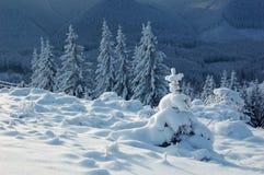 tło zima Fotografia Royalty Free