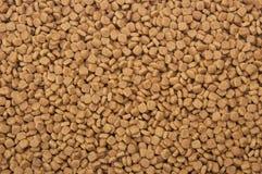 tło zwierzęta domowe susi karmowi Zdjęcie Stock