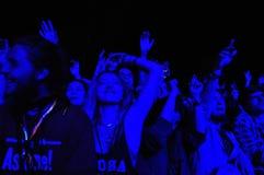 Tłum bawić się ludzi podczas koncerta Zdjęcia Stock