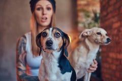 T恤杉和牛仔裤的一位时髦的tattoed白肤金发的女性拥抱两条逗人喜爱的狗 免版税库存照片