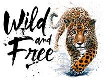 T恤杉的捷豹汽车水彩食肉动物的动物野生生物,狂放和自由野生生物印刷品 库存照片