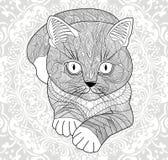 T恤杉的柱基, 成人的着色页 与一个种族花卉样式的手画猫 抽象花坛场 库存图片