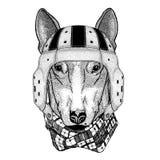 T恤杉设计野生动物佩带的橄榄球盔甲体育例证的狗 免版税库存图片