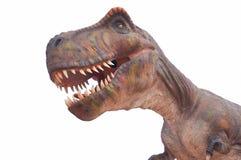 T雷克斯恐龙的复制品 免版税库存图片
