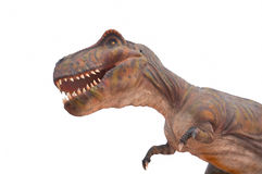 T雷克斯恐龙的复制品 库存图片
