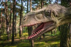 T雷克斯恐龙雕象 图库摄影