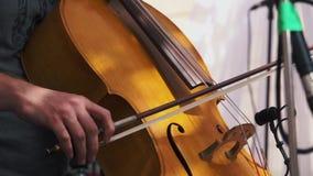 t 使用在爵士乐音乐会的大提琴手 影视素材
