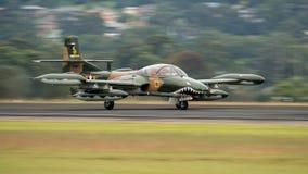 T-37蜻蜓 图库摄影