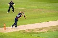T20蟋蟀比赛板球运动员 库存图片