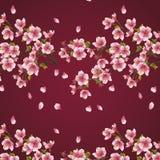 与樱桃t分支的无缝的背景褐紫红色  免版税库存图片