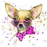狗时尚T恤杉图表 狗例证有飞溅水彩织地不很细背景 异常的例证水彩小狗 库存图片