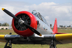T-6 Texan Royalty Free Stock Images