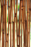 tła bambusa trzcina Obraz Stock