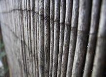 tła bambusowego placemat bezszwowy tekstury wektoru wicker Fotografia Royalty Free