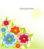 tła beautifull dekoracyjny kwiat Obraz Royalty Free