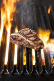 T-bone steak on the barbecue Stock Photos