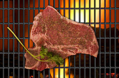 T-Bone Steak. Stock Image