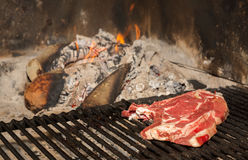 T-Bone steak on grill Royalty Free Stock Photography