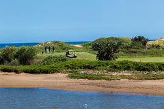 A T-caixa dos jogadores de golfe liga o furo Imagens de Stock Royalty Free