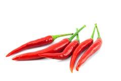 tła chili koloru kontrasta czerwony korzenny biel Fotografia Royalty Free