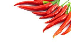 tła chili koloru kontrasta czerwony korzenny biel Zdjęcia Stock
