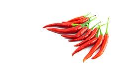 tła chili koloru kontrasta czerwony korzenny biel Obraz Royalty Free