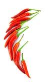 tła chili koloru kontrasta czerwony korzenny biel Zdjęcie Royalty Free