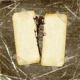 tła ciemni projekta grunge papiery Zdjęcie Royalty Free
